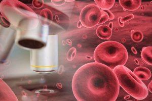 konflikt krwi